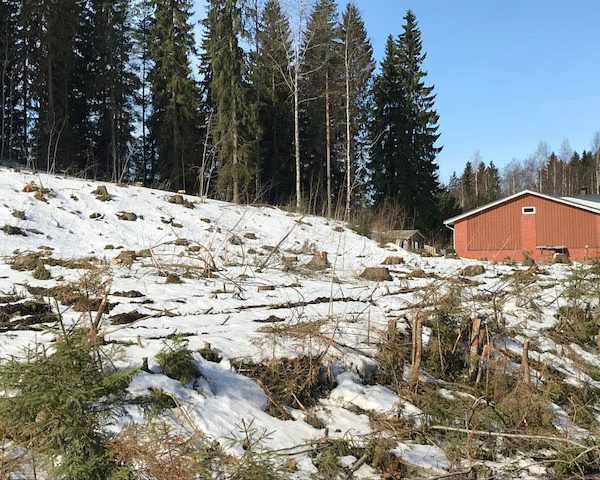 Talliosake: Harjulinna, Lahti